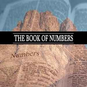 Book Of Numbers Chapter 1